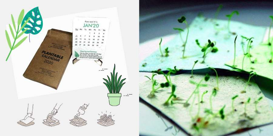 Do not throw your calendar, plant it!